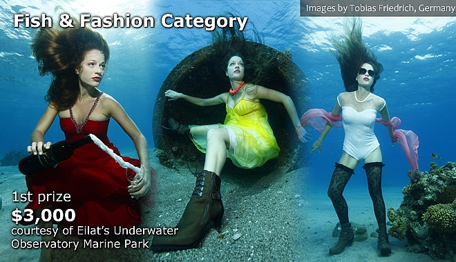 Fish & Fashion Category